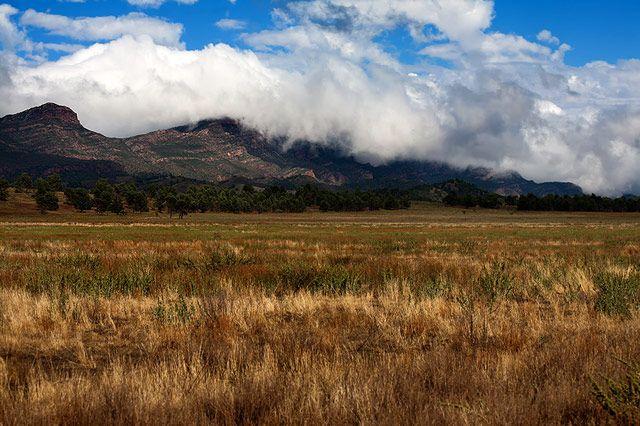 Zdjęcia: Wilpena, Flinders Ranges, Eczesnym rankiem, AUSTRALIA