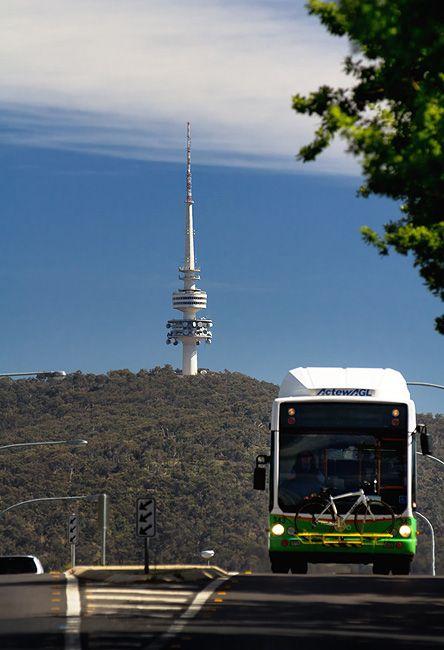Zdjęcia: Black Mountain, Canberra, Telstra Tower, AUSTRALIA