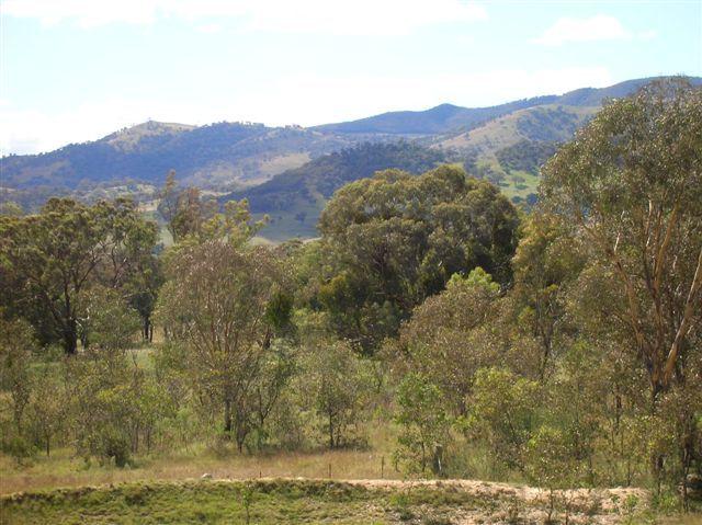 Zdjęcia: Namadgi Nat. Park, Wsch. Australia, Australian Alps, AUSTRALIA