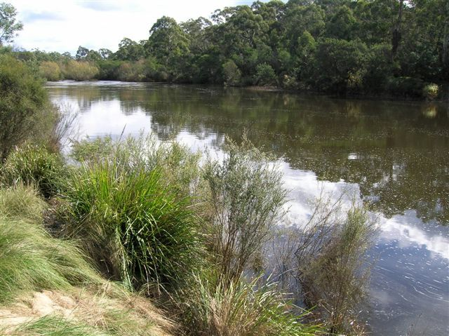 Zdjęcia: okolice Nerriga, Wsch. Australia, Shoalhaven River, AUSTRALIA