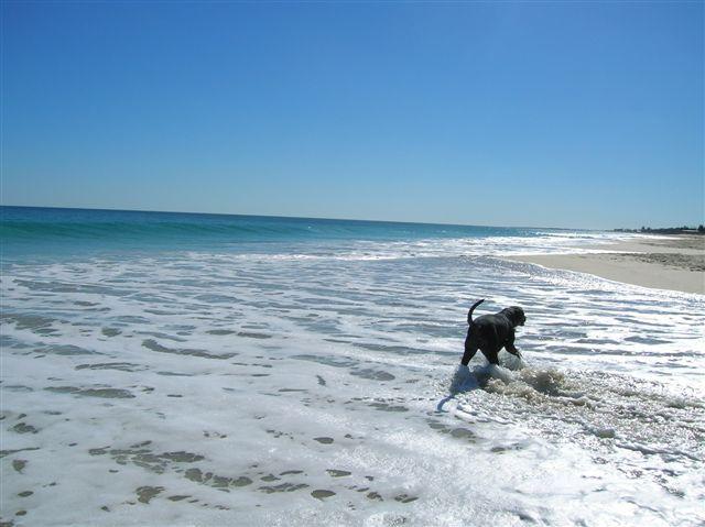 Zdjęcia: Perth, WA, Kapiel.., AUSTRALIA