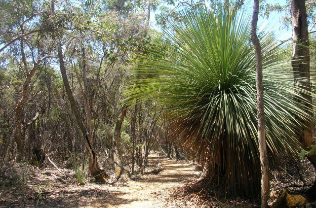 Zdjęcia: Flinders Ranges, szlakiem Flindersa, AUSTRALIA