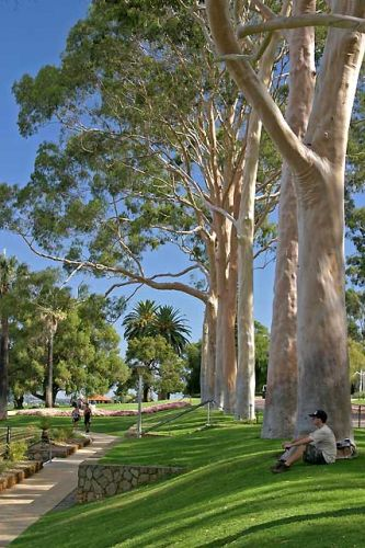 Zdjęcia: Perth, Aleja Duchów, AUSTRALIA