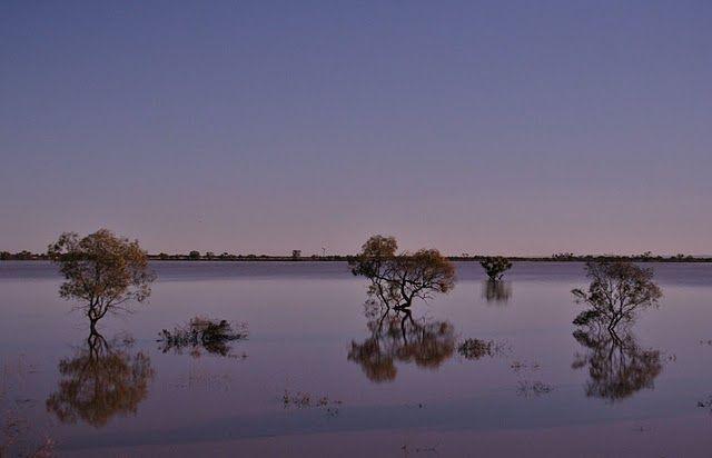 Zdjęcia: w drodze do Broken Hill, w drodze do Broken Hill, AUSTRALIA