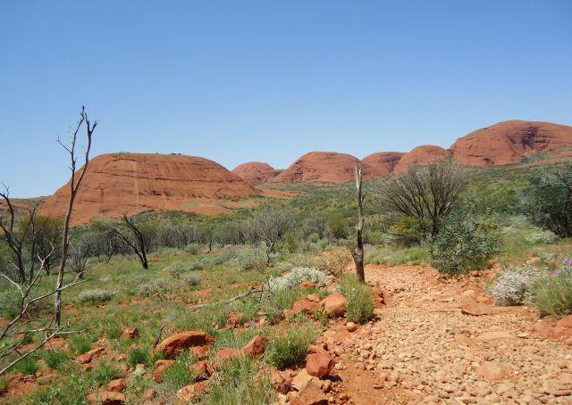 Zdjęcia: Kata Tjuta, Terytorium Północne, ..czyli wiele głów..., AUSTRALIA