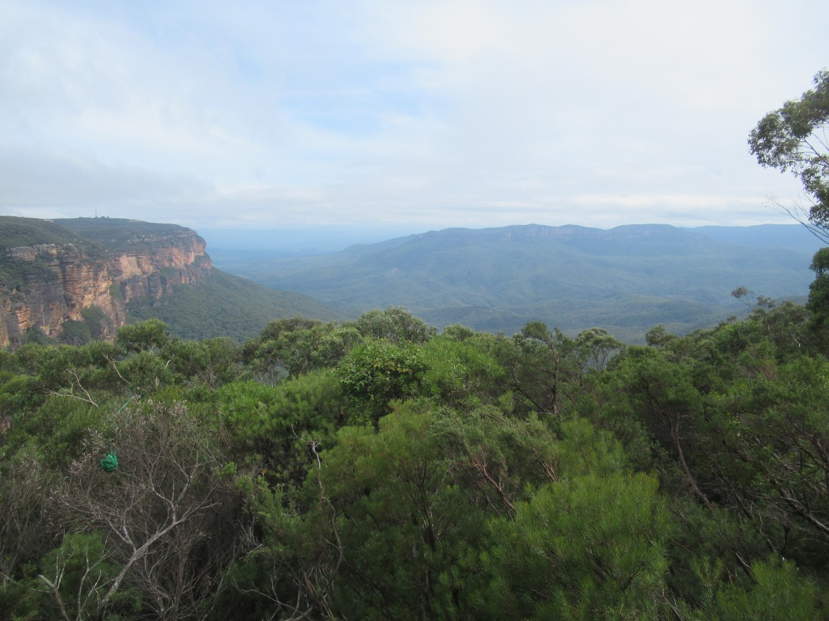 Zdjęcia: 100 km od Sydney, New South Wales, Blue Mountain, AUSTRALIA