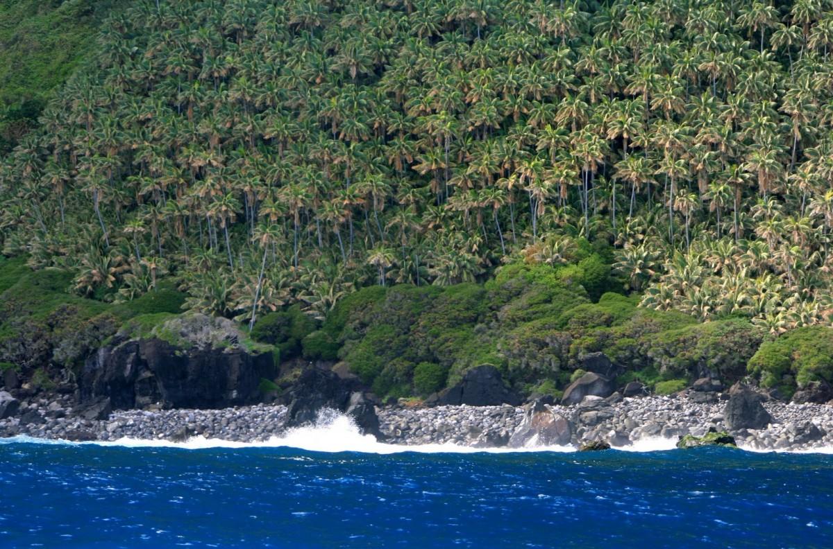 Zdjęcia: Gzieś na Pacyfiku, N.P.W, Tajemnicza Wyspa, AUSTRALIA