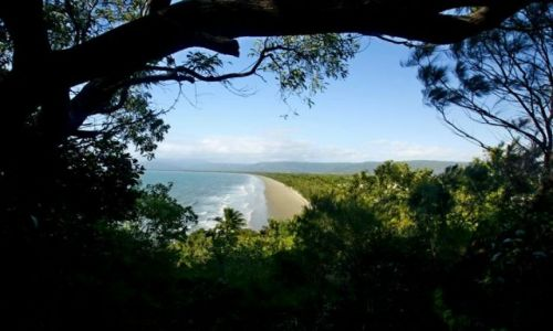AUSTRALIA / Queensland / Port Douglas Beach / Plaze Polnocnego Queensland
