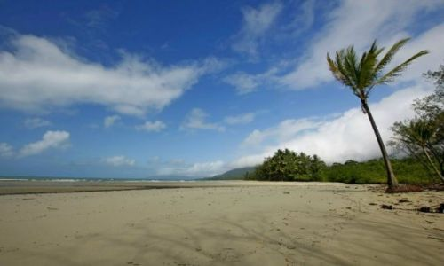 AUSTRALIA / Queensland / Cape Tribulation / Plaze Polnocnego Queensland