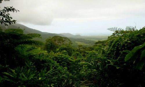 AUSTRALIA / Queensland / Alexadra's Lookout, Daintree / Widok na ocean z lasu deszczowego