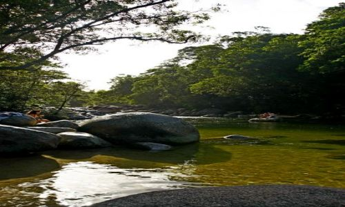AUSTRALIA / Queensland / Port Doglas / Mossman Gorge