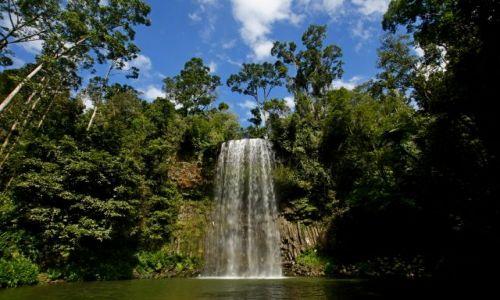 AUSTRALIA / Queensland / Atherton Tablelands / Wodospad Millaa Millaa
