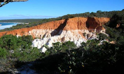 Zdjęcie AUSTRALIA / Eden, NSW / Park narodowy / Kolorowe skaly nad Pacifikiem