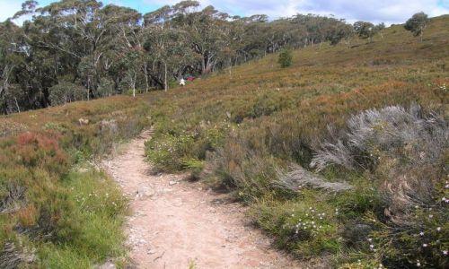 Zdjęcie AUSTRALIA / NSW / Okolice Canberry / Droga w gorach