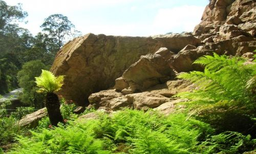 Zdjęcie AUSTRALIA / NSW / Niebieskie gory-Blue Mountains / Jenolan Caves