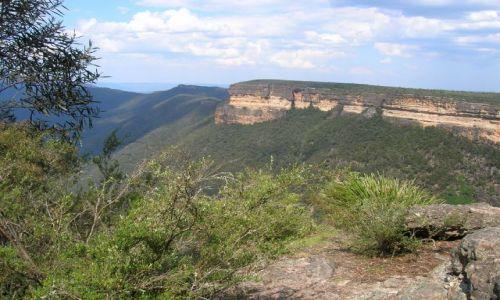 Zdjęcie AUSTRALIA / NSW / Blue Mountains / Kanangra Wall