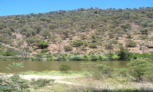 Zdjecie AUSTRALIA / ACT / Kambah pool / Murrumbigi River