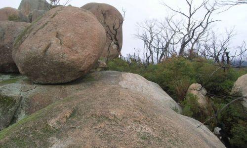 Zdjęcie AUSTRALIA / ACT / Tidbinbilla mountains / Boulders..