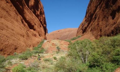 Zdjecie AUSTRALIA / -Północne Terytorium / pustynia / kata tjula z bliska