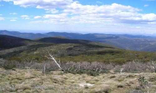 Zdjęcie AUSTRALIA / ACT / Namadgi Nat. Park / W gorach, MT. Gingera