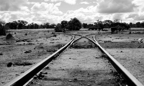 Zdjęcie AUSTRALIA / - / gdzies po drodze... / na rozstaju drog....