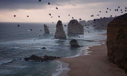 Zdjecie AUSTRALIA / Victoria / Loch Ard  / 12 Apostols