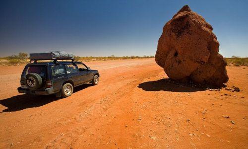 Zdjęcie AUSTRALIA / Northern Territory / Higway Plenty / termitiera