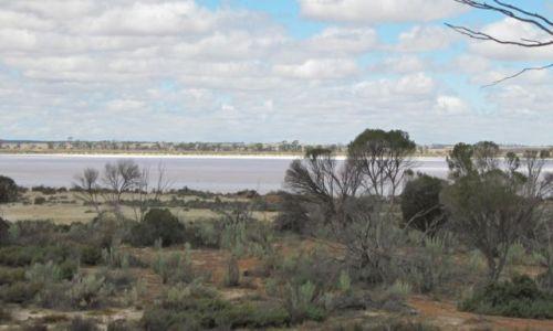Zdjecie AUSTRALIA / Pn od Albany / Kondining National Park / słone jezioro