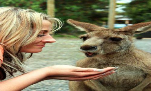 Zdjęcie AUSTRALIA / Wiktoria / Phillip Island / Face in...face