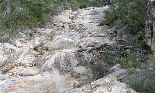 Zdjecie AUSTRALIA / Wsch. Australia / Australian Alps / Betonowa sciezka w gorach