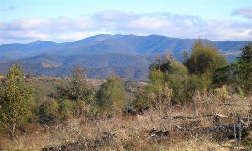 Zdjecie AUSTRALIA / ACT / MT Stromlo / Widok na gory-Blue Ranges