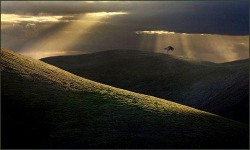 Zdjecie AUSTRALIA / -Polwysep Florieu / Second Valley / One Tree Hill