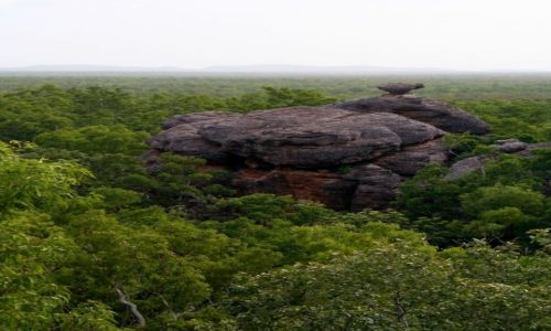 Zdjecie AUSTRALIA / - / Kakadu National Park / Podroze