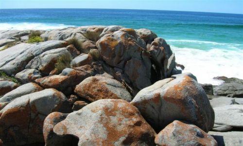 Zdjecie AUSTRALIA / NSW / South Coast / Skaly i ocean