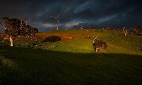 AUSTRALIA / South Australia / Polwysep Florieu / Barwy wiosennego poranka