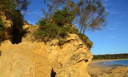 AUSTRALIA / NSW / South Coast / Piaskowa skala nad oceanem