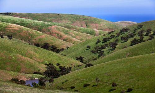 Zdjecie AUSTRALIA / South Australia / Polwysep Fleurieu / marmurkowe wzgorza