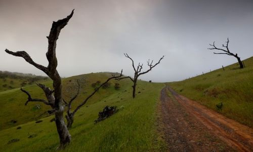 Zdjecie AUSTRALIA / South Australia / Deep Creek / ...