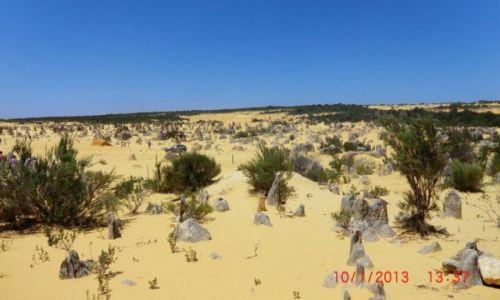 Zdjecie AUSTRALIA / Australia Zachodnia / Park narodowy Nambung k/Perth / ...