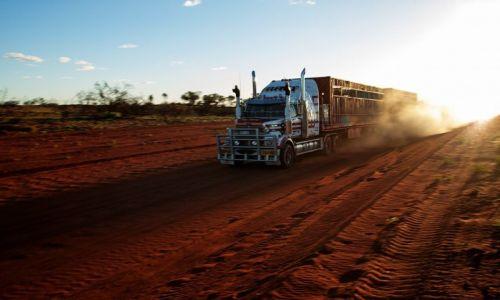 Zdjęcie AUSTRALIA / Northern Territory / Red Centre / 53.5 m