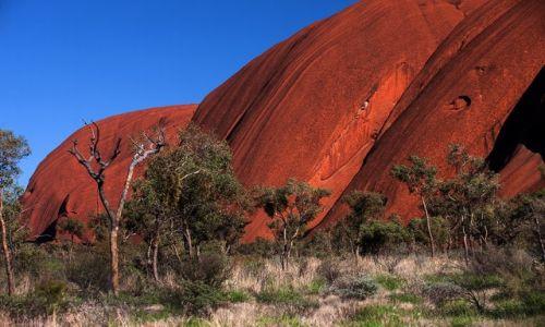 Zdjecie AUSTRALIA / Northern Territory / Red Centre / Uluru