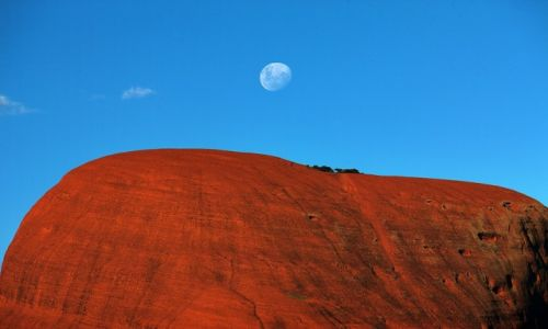 Zdjęcie AUSTRALIA / Northern Territory / Red Centre / Moon over Olgas