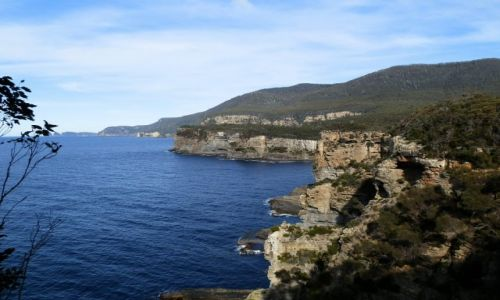 Zdjecie AUSTRALIA / Tasmania / Okolice Hobart / Tasmania