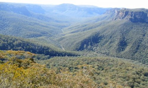 Zdjęcie AUSTRALIA / NSW / Okolice Sydney / Góry Błekitne
