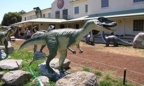 Zdjecie AUSTRALIA / ACT / Canberra / Muzeum dinozaurow