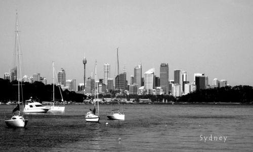Zdjecie AUSTRALIA / Nowa Południowa Walia / Sydney / konkurs
