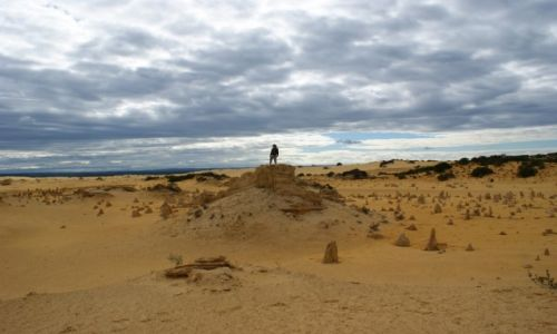 AUSTRALIA / Zachodnia Australia / Pinnacles / Pinnacles