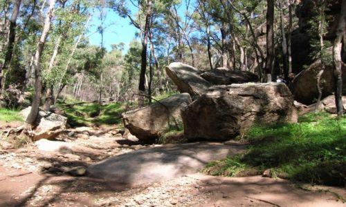 Zdjecie AUSTRALIA / Outback wschodni / Warrumbungle-oaza gorska na pustkowiu / Na szlaku