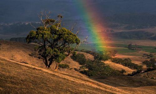 Zdjecie AUSTRALIA / Poludniowa Australia / Polwysep Fleurieu / UNESCO heritage?