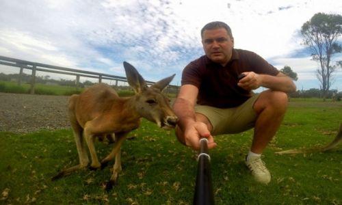Zdjęcie AUSTRALIA / Okolice Sydney / Mini Zoo / Selfie z kangurem